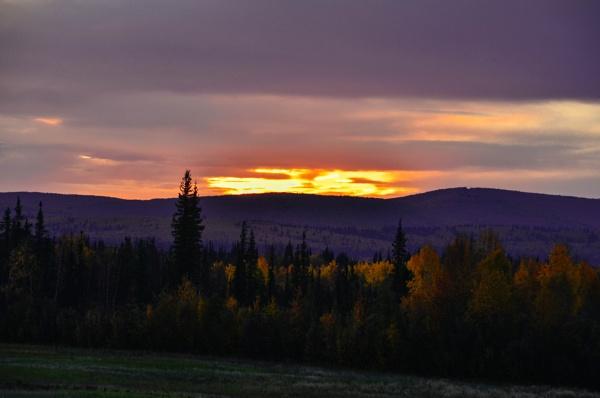 Kiss Of Morning Sun by Rebeak