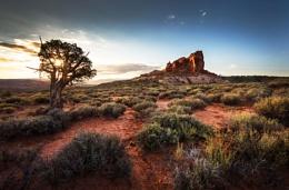 Desert Calm