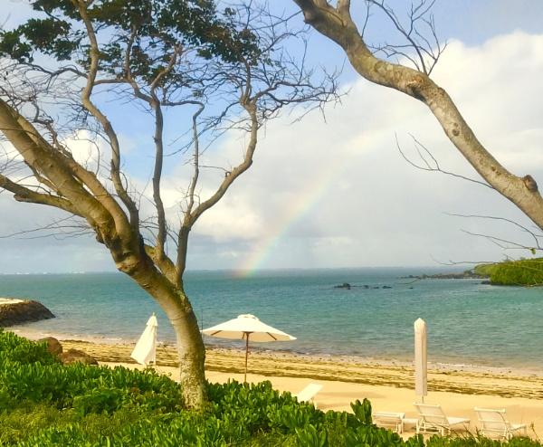 Rainbow in Paradise by caj26