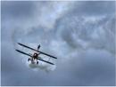 Bi-Plane Walker by sueriley