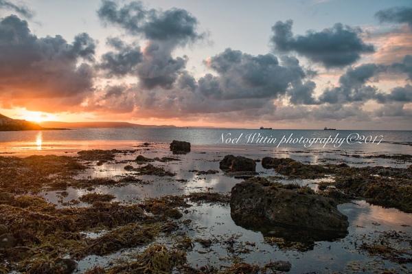 Newtons cove sunrise by Noel126