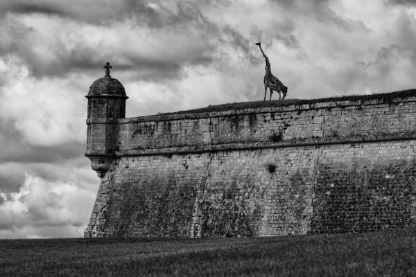 Serengeti Castle by RobboB