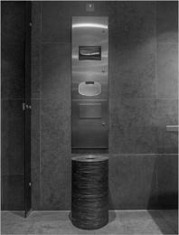 Posh Toilet