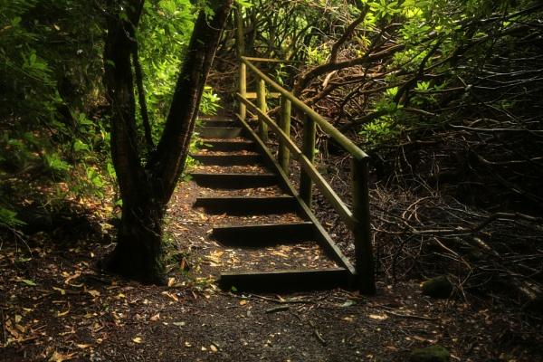 Hawkestone Park Follies by optik