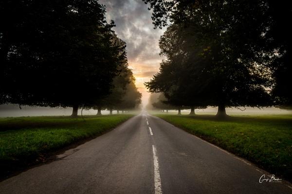 Morning Mist by MonochromeTear