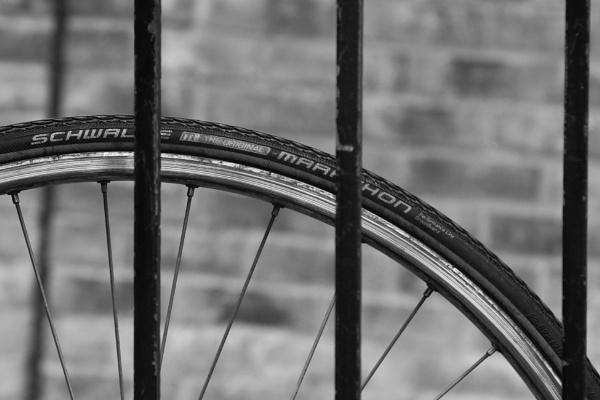 wheel arch 2 by HoneyT