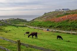 Photo : Cornwall, at Land's End