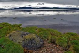 Scottish Landscapes - The Coastal Inlet