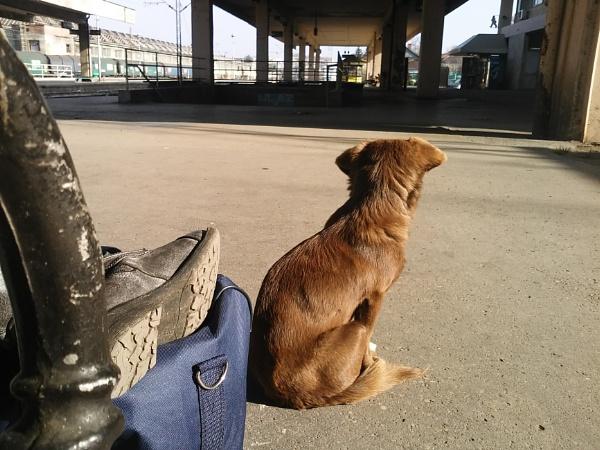 Train station Nis by eternalsunshine