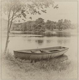 Summer at the Loch