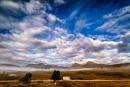 Wonderful Morning on Rannoch Moor by douglasR