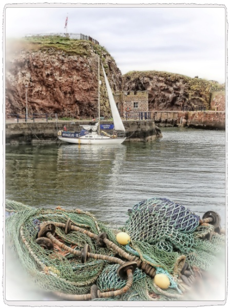 View across Dunbar Harbour by PhilT2