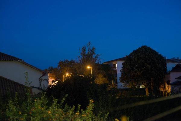 Evening blue by HarrietH