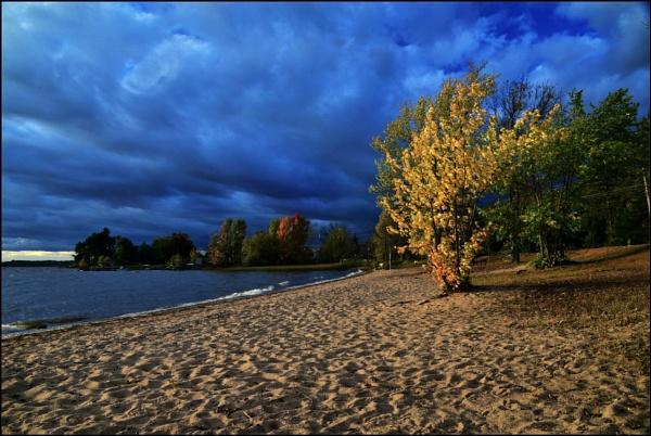 Autumn evening on the beach by djh698