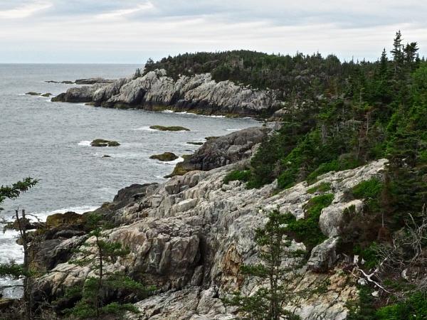 Traveling in Maine #25 by handlerstudio
