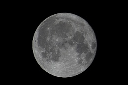 Harvest Moon Galveston County LaMarque Texas