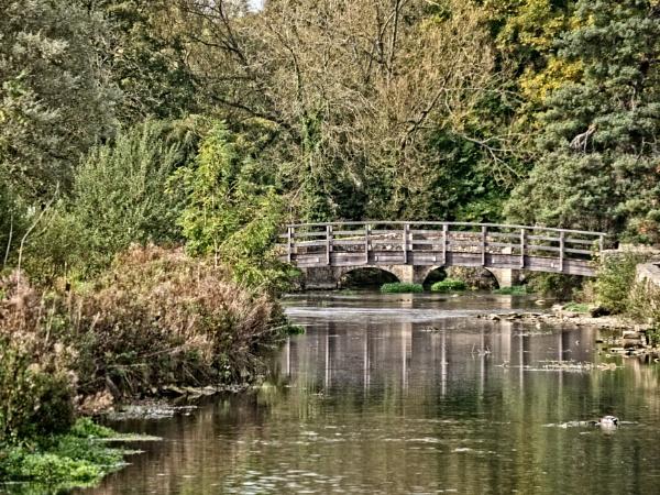 Wooden bridge by fujipat