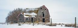 Derelict dairy barn