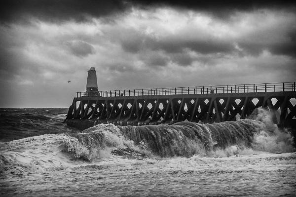 Wild Waves by Sue_R