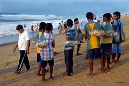 sea shell(jhinuk) seller
