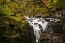 Hermitage Waterfall by Irishkate