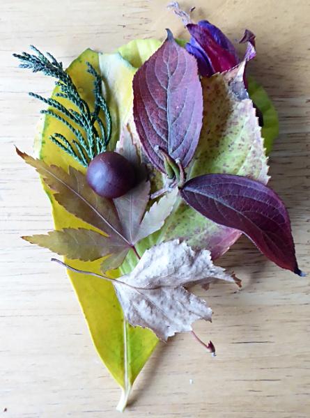 Autumn Leaves by Gypsyman