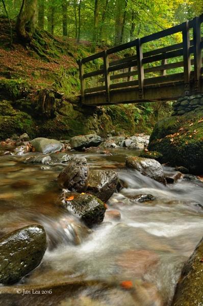 Autumn Falls by janlea