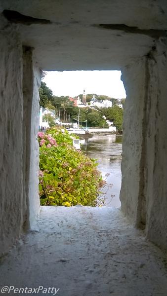 Through the squarish window. by pentaxpatty