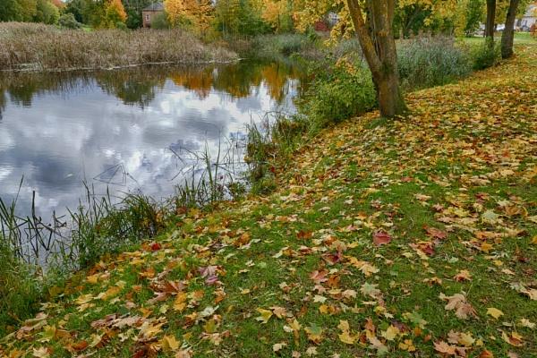 Autumn river by Zenonas