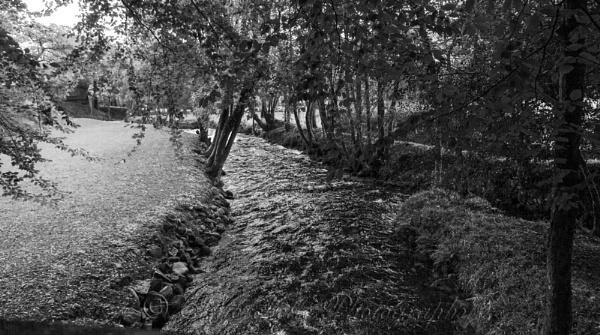 Cutting Through by interchelleamateurphotography