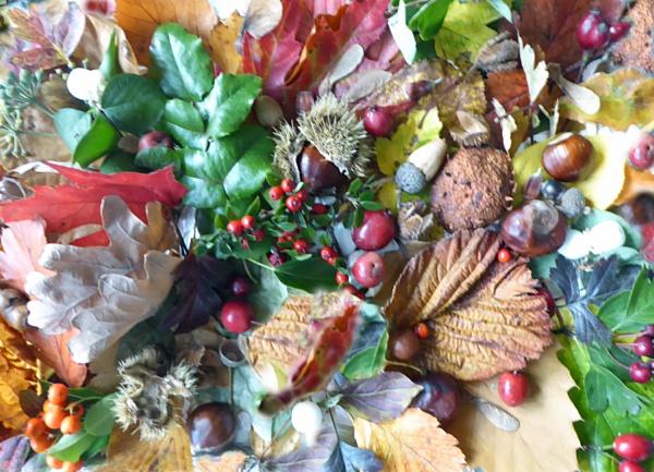 Autumn Leaves & Fruits by Gypsyman