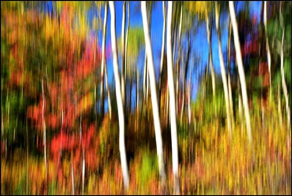Autumn blur by djh698