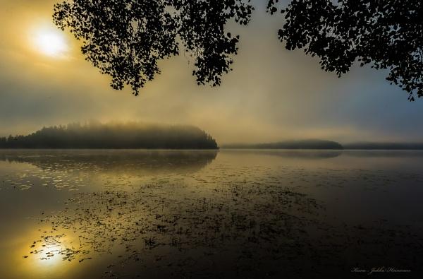 Misty sunshine. by kuvailija
