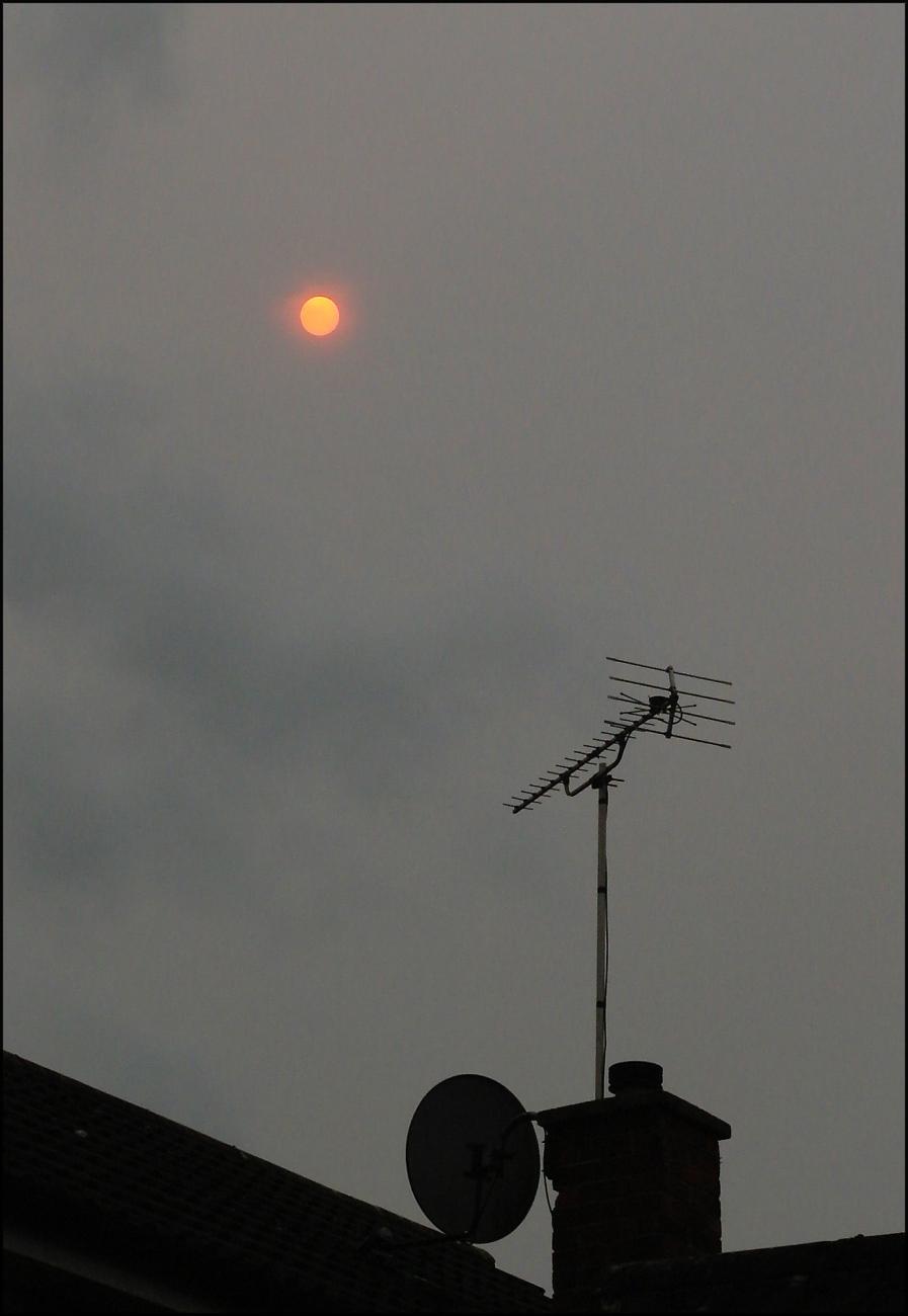 Sahara Sun