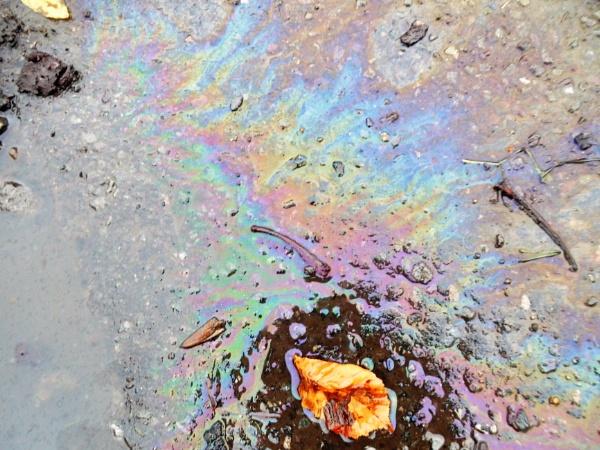 oil spill by jenny007