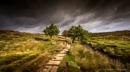 Padley Brook by kojak