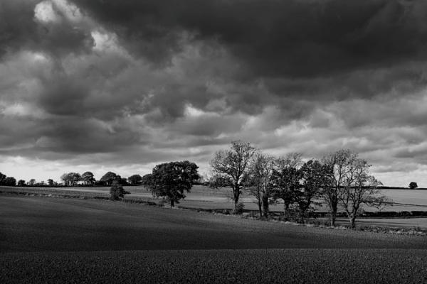 Black & White Farmland by rickhanson