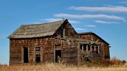 Waffled roof house