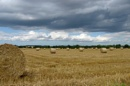 Norfolk, England . harvest by jerseygirl65