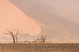 Sandstorm Namib desert