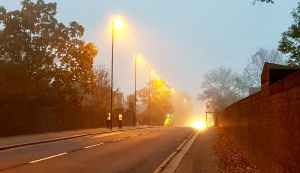 Fog by nclark