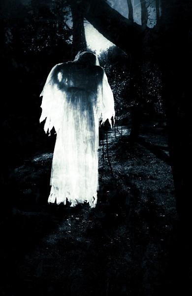 Moonlight Apparition.