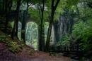 Groudle Glen by Jasper87