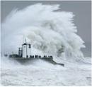 Storm Watchers by geoffrey baker