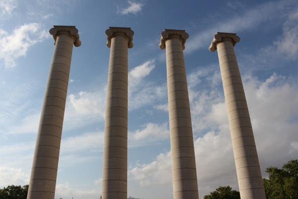Columns by Aniko