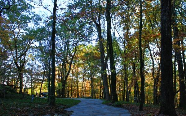 Thorncrown Autumn 3 by lesleysfix