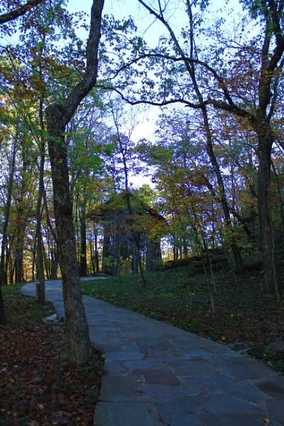 Thorncrown Autumn 1 by lesleysfix