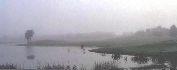early morning mist light 1 by Nesto