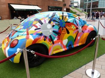 Multicoloured Beetle