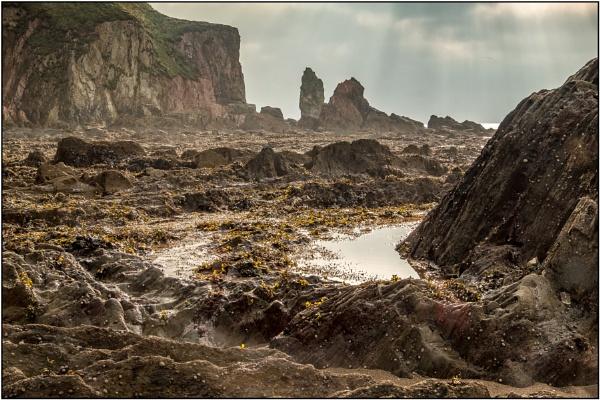 Seascape - Moonscape by DTM
